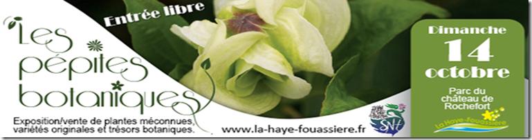 Les pépites botanique la haye fouassière 14 Octobre